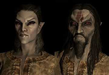 Dark Elf Dunmer best race skyrim