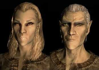 High Elf Altmer best race skyrim