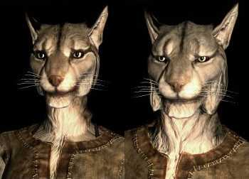 Khajiit best race skyrim
