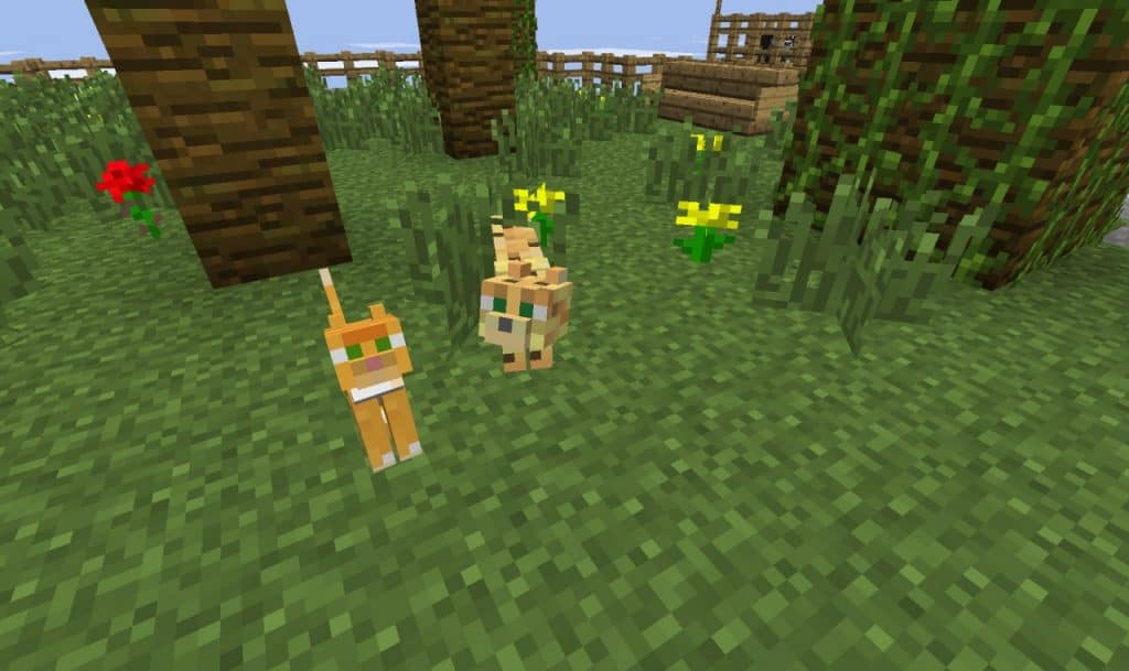 Tamable Mobs things to do when you're bored in minecraft ideas