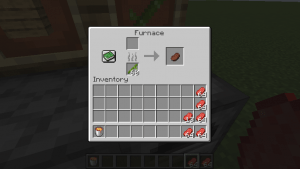 best fuel minecraft