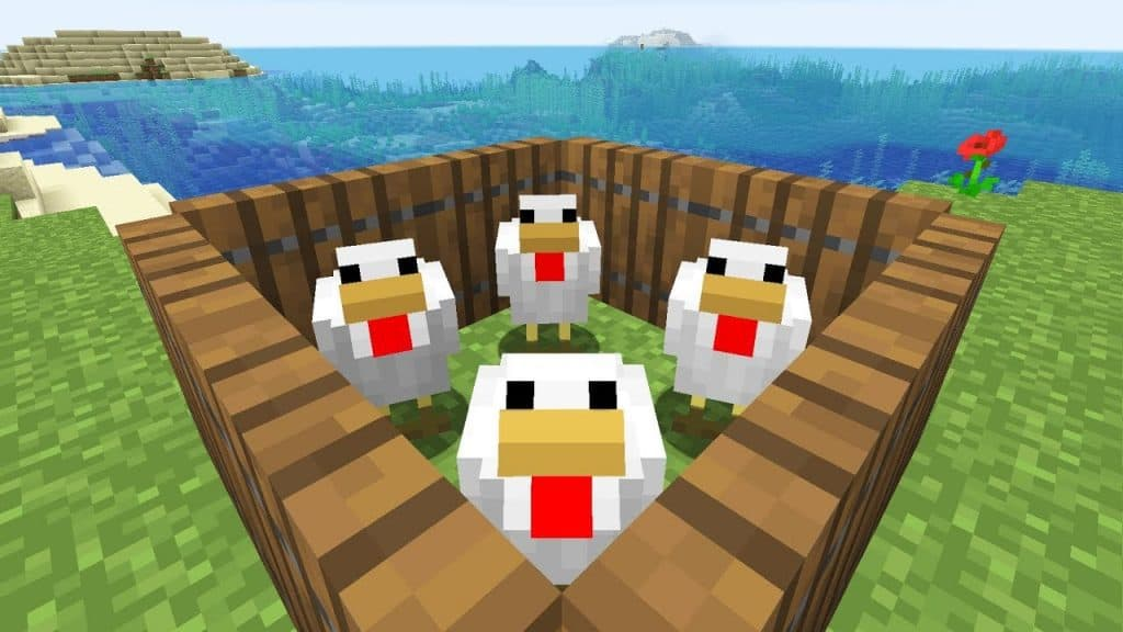 chickens best animals to farm minecraft